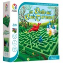 La Belle au bois dormant, Smart Games