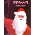 Barbe du Père Noël + perruque + sourcils